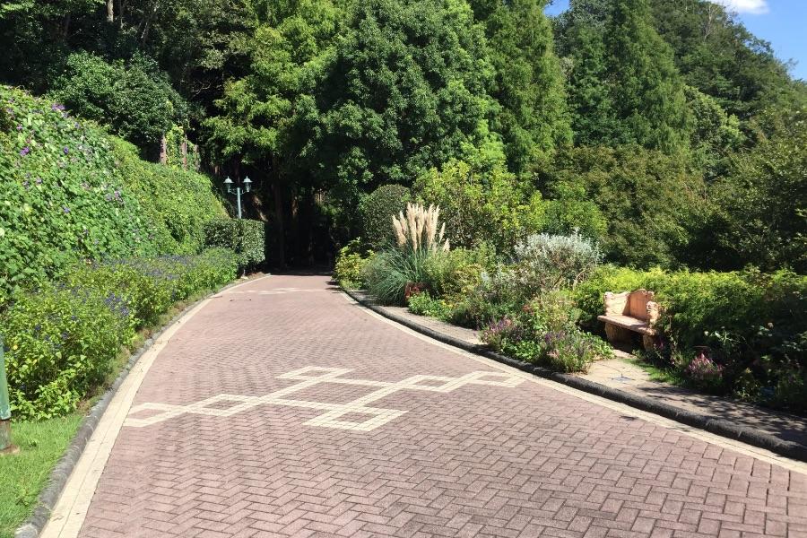神戸布引ハーブ園:緑の中を散歩